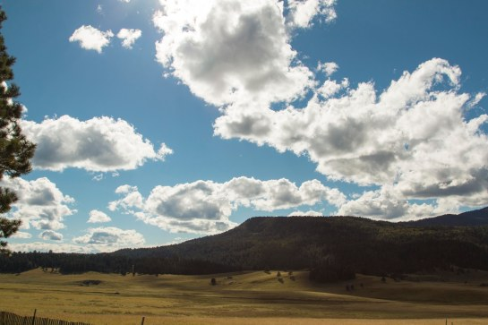 The park entrance promises great skies and open fields under dark mountain ranges with pinion and ponderosa pines.