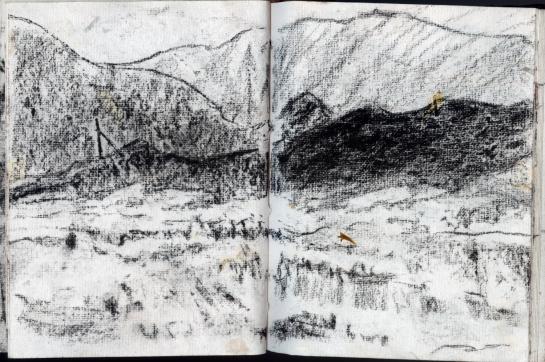 valles caldera vincent colvin 3