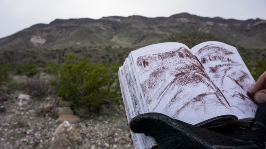 Sketching during a brief break in Big Bend, never even got off my riding glove.